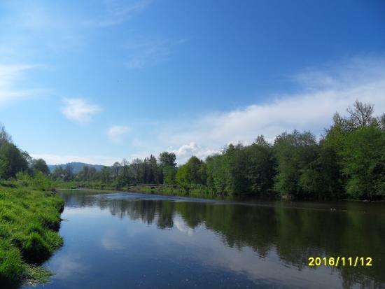 Hotel Debina: rzeka Koszarawa w bezpośrednim sąsiedztwie