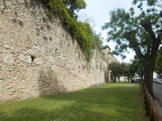 Mura Poligonali