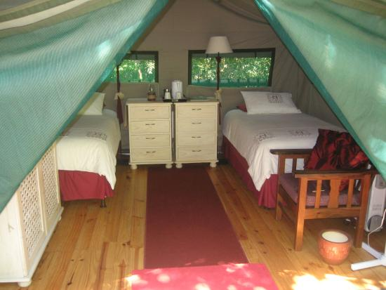 Thandulula Luxury Tent Accommodation Small Kokomoyo tent 2 single beds coffee tray & Small Kokomoyo tent 2 single beds coffee tray bathroom ...