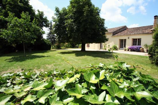 Les Salles-De-Castillon, França: Bleu Raisin - front view