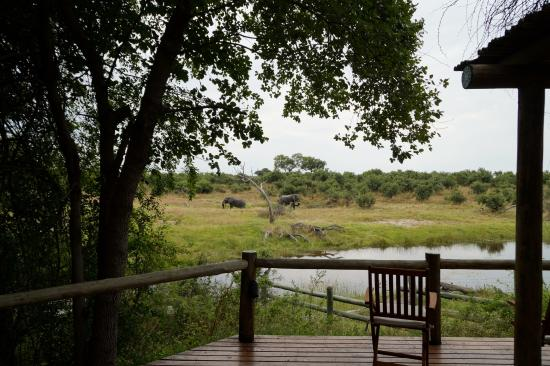 Gambar Chobe National Park