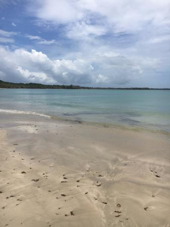 Buccoo, Tobago: Beach across the road from the guesthouse