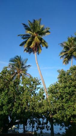 Cococottage-Maldives