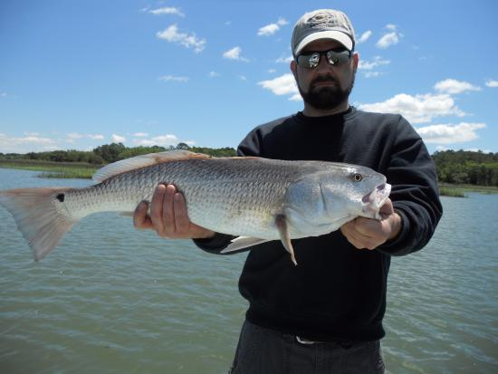 Ridgeland, Южная Каролина: One of the big fat redfish caught by my son.