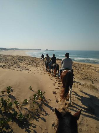 Kenton-on-Sea, Sudáfrica: There is only ONE Cape and that's the EASTERN CAPE