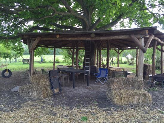 Welsummer Camping: Communal space