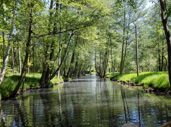 Spreewaldfahrt, Familie Goertz : Потрясающе красивое место!