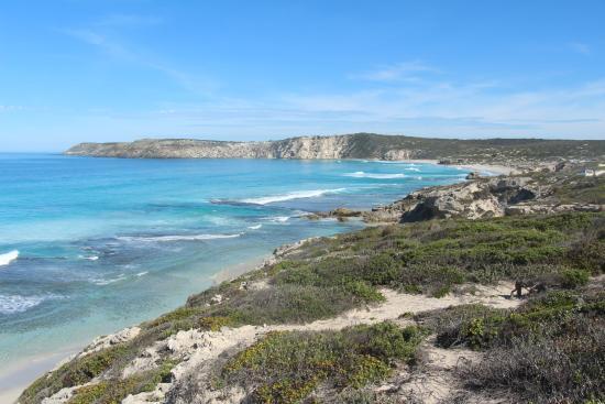 Kingscote, Australia: gorgeous beaches