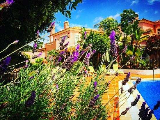 Quinta Jacintina Hotel照片