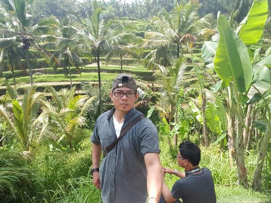Tegalalang Rice Terrace : Keunikan irigasi sawah tradisional Bali