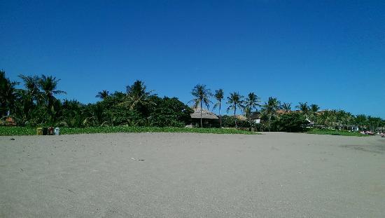 Kerobokan, Endonezya: IMAG5888_large.jpg