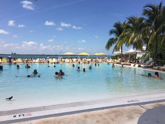 The Standard Miami Photo