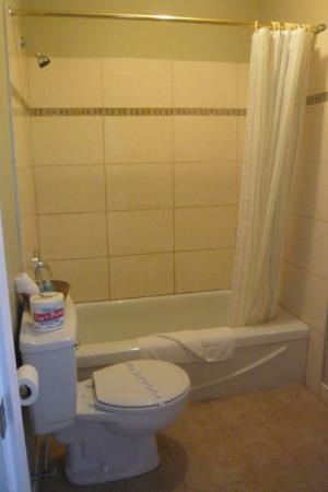 Harrison Spa Motel: Queen room bathroom