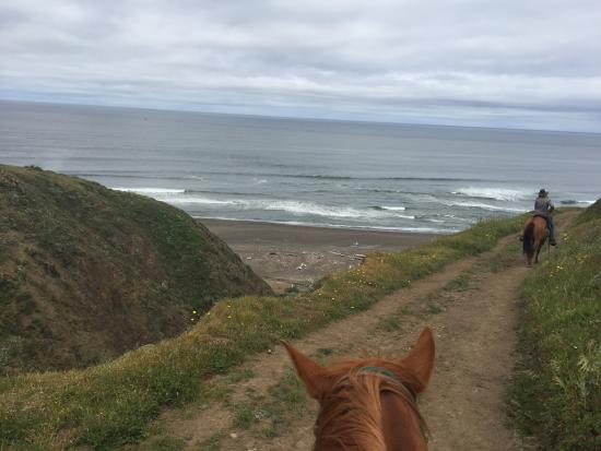 Ross Ranch : Private access trail to the beach