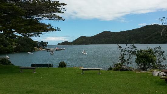 Whangapara, Nueva Zelanda: IMG-20151104-WA0001_large.jpg