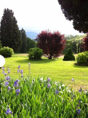 Vicchio, Italien: Garden
