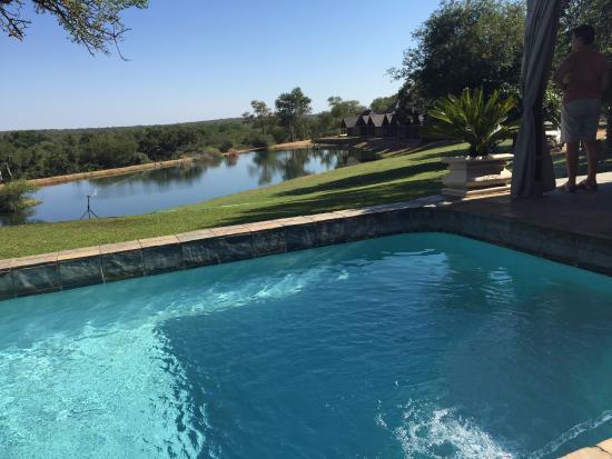 Elandela Private Game Reserve: Amazing vies sunbathing at the pool