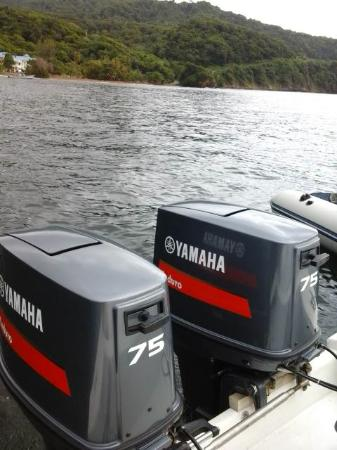 Speyside, Tobago: WELL MAINTAINED ENGINES, 75 YAMAHA HEORSE POWER GUARANTEE SAFETY