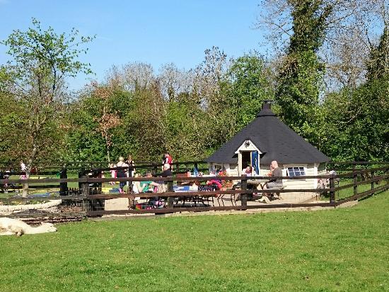 Maynooth, Irlanda: Clonfert Pet Farm