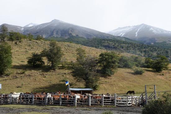 Las Torres Patagonia Picture
