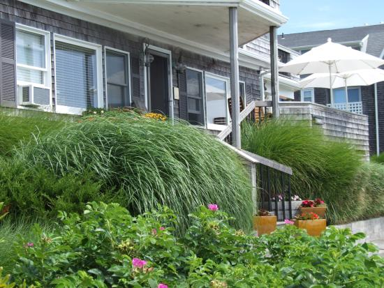 butterfly garden - Picture of Inn on the Sound, Falmouth - TripAdvisor