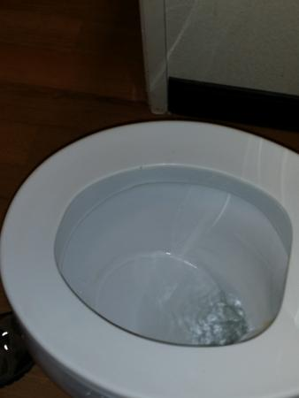 Red Roof Inn Peoria: Toilet Seat Had Permanent Stains   Very Reassuring  That It Is