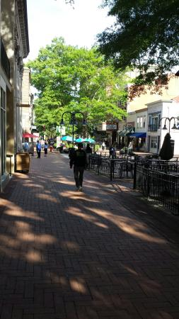 Historic Downtown Mall: 20160514_084922_large.jpg