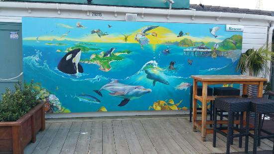Timaru, Nueva Zelanda: 20160506_164102_large.jpg
