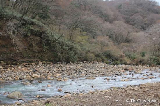 Foto de Fuji Hakone Izu National Park