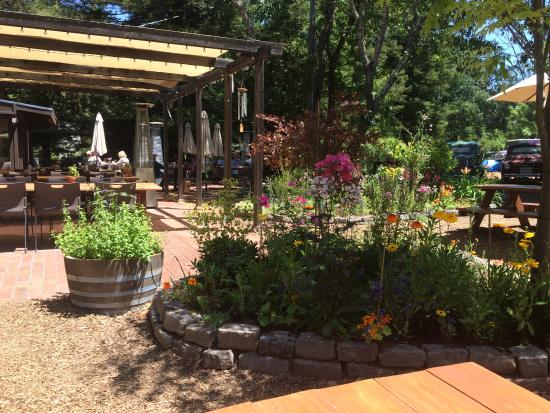 Forestville, CA: patio