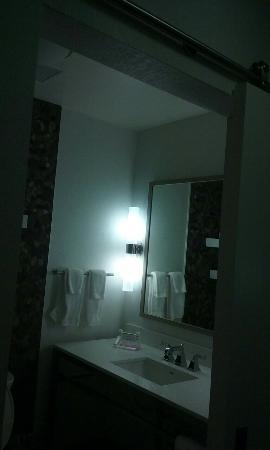 Hilton Garden Inn San Antonio-Live Oak Conference Center