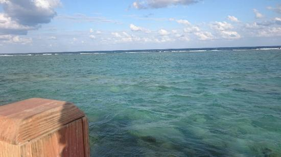 Bodden Town, Grand Cayman: DSC_1366_large.jpg