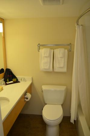 The Inn on Long Lake: Kitchenette Bathroom