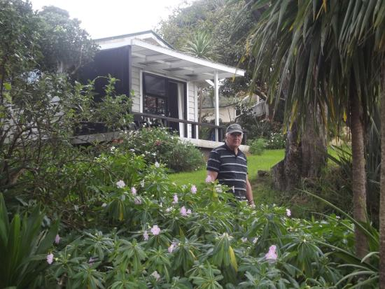 Whangapara, Nuova Zelanda: The cottage location on the property