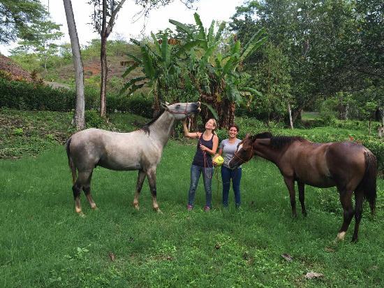 Esterillos Este, Costa Rica: IMG-20160503-WA0022_large.jpg