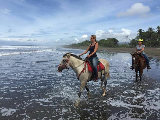 Esterillos Este, Costa Rica: IMG-20160503-WA0017_large.jpg