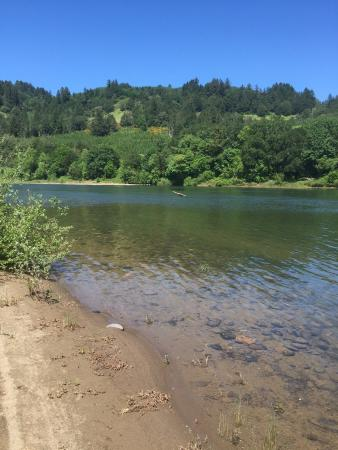 Elkton, Όρεγκον: Umpqua river which wraps around property