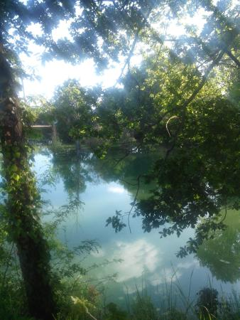 Trogues, Francja: IMG_20160515_190843_large.jpg