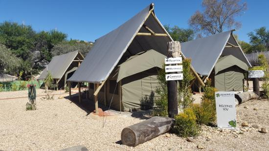 UrbanCamp.net - Camping, Leisure, Windhoek: An example of a covered tent equipped with beds, fridge, fan etc