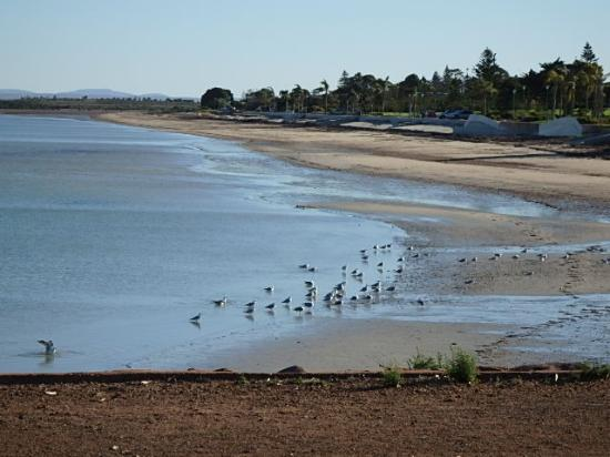 Discovery Parks - Whyalla Foreshore: The beautiful Whyalla foreshore