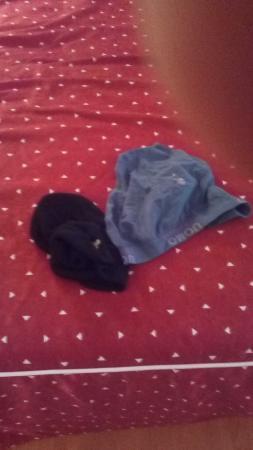 Hotel Restaurante El Cisne: Slip y gorro encontrado en habitaciòn
