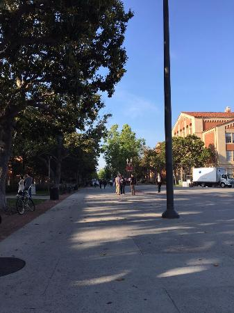 University of Southern California: campus