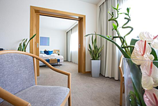 諾富特威尼斯梅斯特卡斯特拉納酒店照片