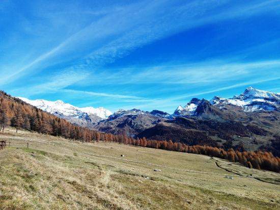 Ayas, Italia: L'alpe Metsan
