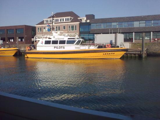 Fast Ferry harbour tours