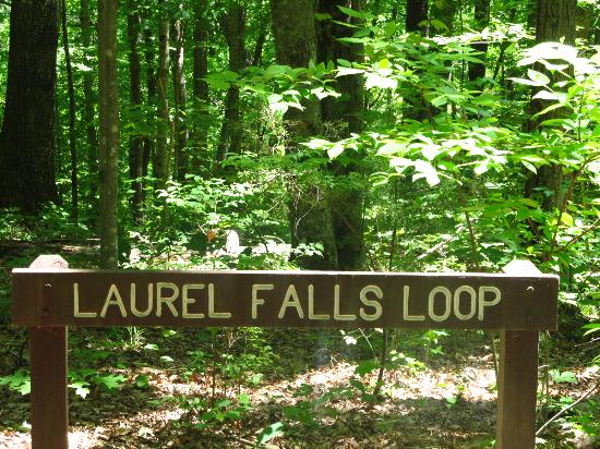 Monteagle, TN: 1 mile (loop) but the fall is few yards (less than 300 yards) from the parking lot