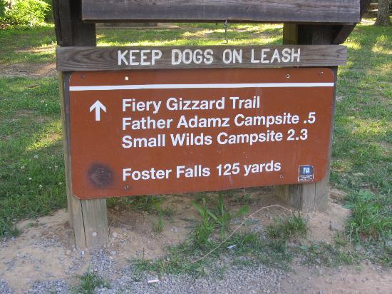 Monteagle, TN: Foster falls