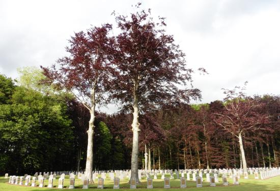 Houthulst Military Cemetery