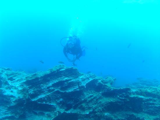 LJ Diving Tenerife: Einer der vielen schönen Tauchplätze, die man vom Tauchcenter erreicht!