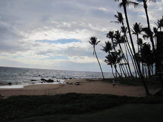 days inn maui oceanfront picture of days inn by wyndham. Black Bedroom Furniture Sets. Home Design Ideas